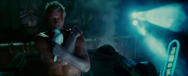 Roy Batty - The Real hero of Blade Runner, if ever a movie change the way I thought about everything this was the one. The power of film is never ending...